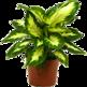 More Plants 插件