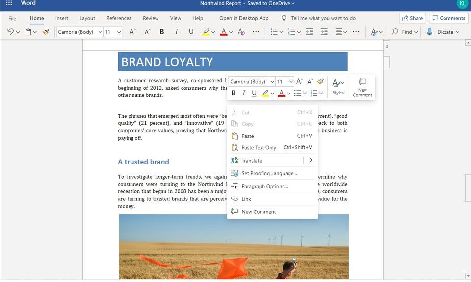 Office Online 复制和粘贴