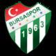 Bursaspor 插件