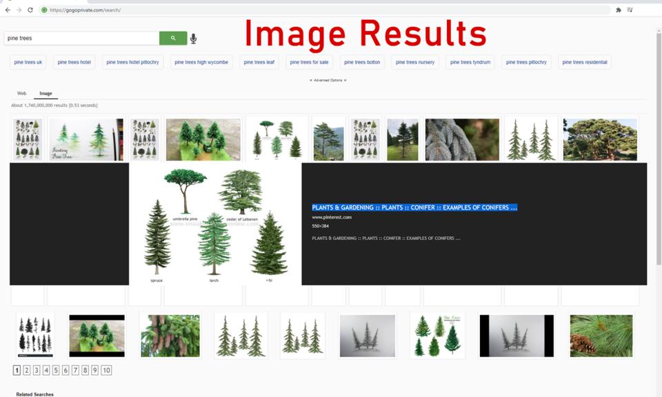 GoGoPrivate — Private Search Engine