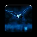 Night Owl 插件