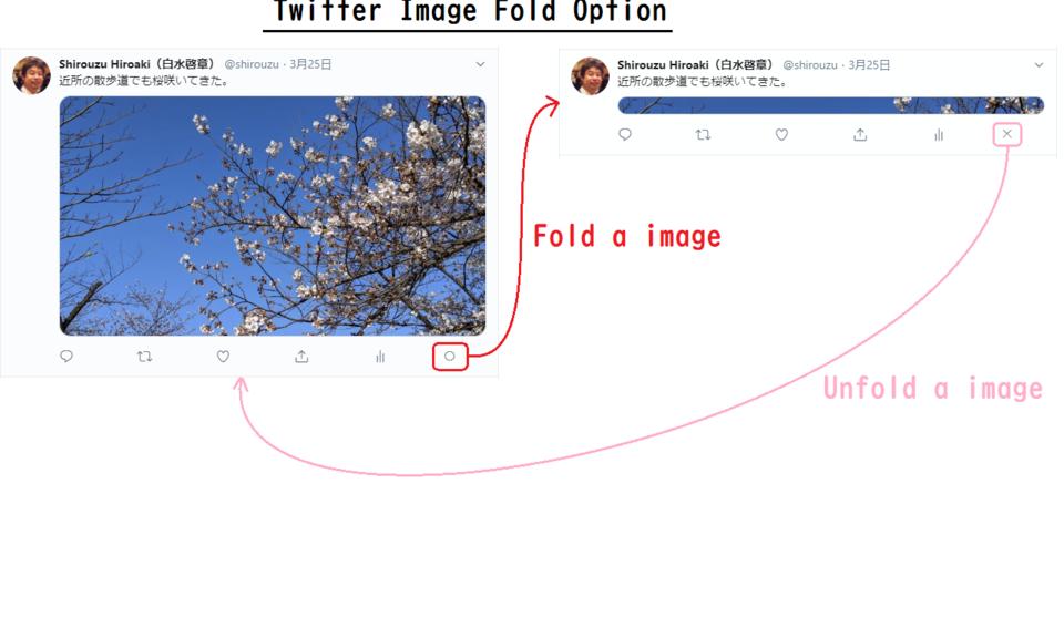 Twitter Image Fold Option