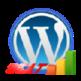 Wordpress Stats 插件