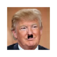 Donald trumps Hitler 插件