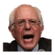 Too Much Bernie 插件