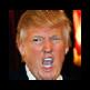 True Trump 插件