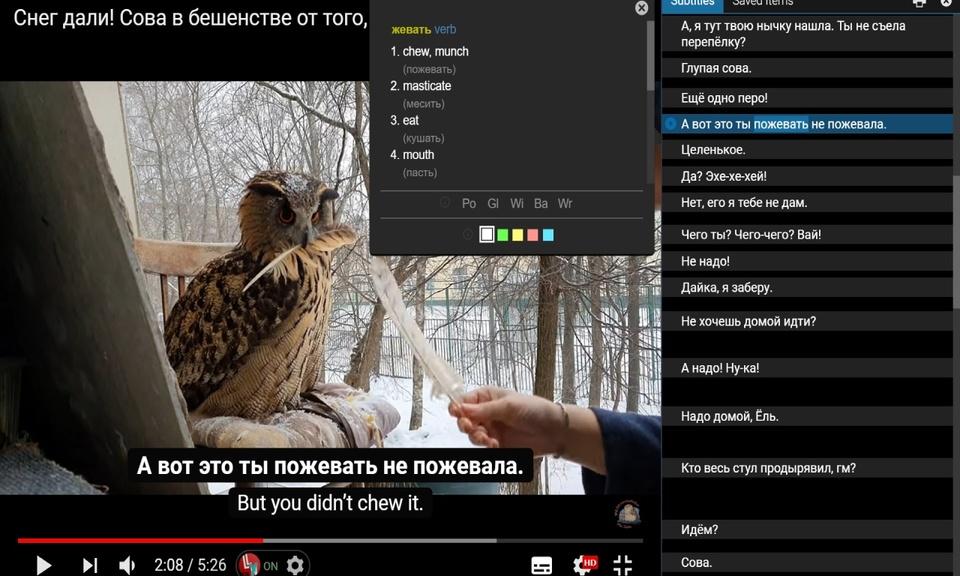 Language Learning with Youtube BETA - YouTube语言学习插件