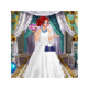 Princess Wedding Dress Up 插件