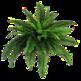 planternative 插件