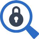 Secure Search Pro 插件