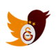 Galatasaray Twitter Theme 插件