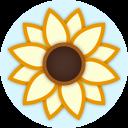 Sunny Side - Positive Affirmations 插件