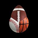 SportSearch 插件