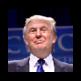 Describing Trump 插件