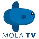 Mola TV Mod Apk 插件
