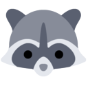 raccoon-weather 插件