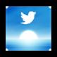 Tweets Per Day 插件