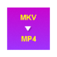 MKV to MP4 Converter 插件