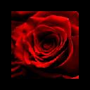 ROSEBUDDY v1.2 by LOVEWARE!