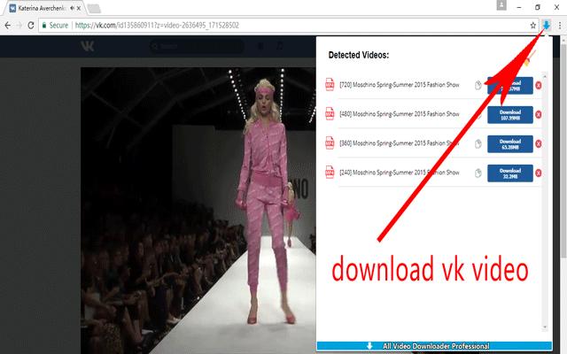 Video Downloader Professional - 全视频专业下载插件