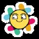 Hide Slack Messages 插件