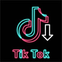 TikTok Downloader - No Watermark 插件