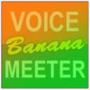 Voicemeeter banana Download Latest Version 插件