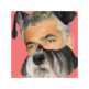 Yair Lapid Stop Barking 插件