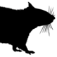 OTR-Ratte 插件