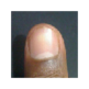 thumbbit 插件