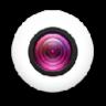 Webcam Toy 插件