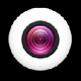 Webcam Toy - Webcam自拍插件