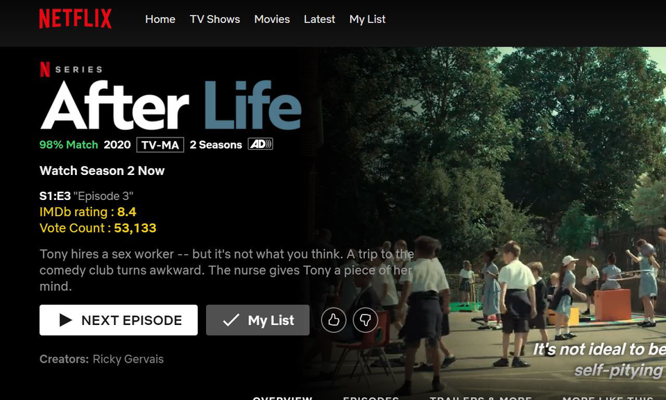 IMDB Netflix Augmentation