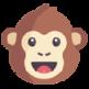 REST Ape - Advanced API Testing Client 插件