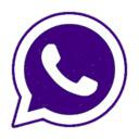 WhatsApp Live 插件