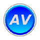 ARIA Validator 插件