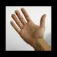 Make America's Hands Tiny Again