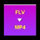 FLV to MP4 Converter 插件