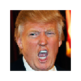 Trump your friend 插件