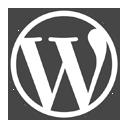 WordPress Checker 插件