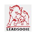 LeadSooie Dialer 插件