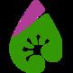 DropGecko 插件