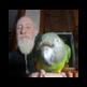 Bird Food and Parrot Food Experts 插件