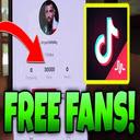 Free Tiktok Followers 插件