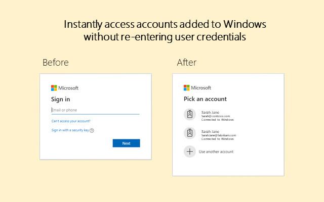Windows 10 Accounts-解除账户访问标识保护插件