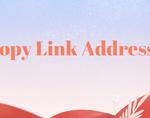 Copy Link Address插件,快速复制Chrome网页链接地址
