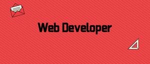 Web Developer,开发者调试插件,集成多类web开发工具