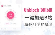 Unblock bilibili插件,解除海外用户观看B站视频限制,加速视频资源