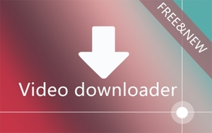 Video Downloader professional插件,网页视频嗅探下载器