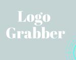 Logo Grabber插件,一键获取任意网站Logo及配色字体